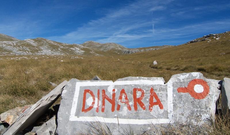 dinara