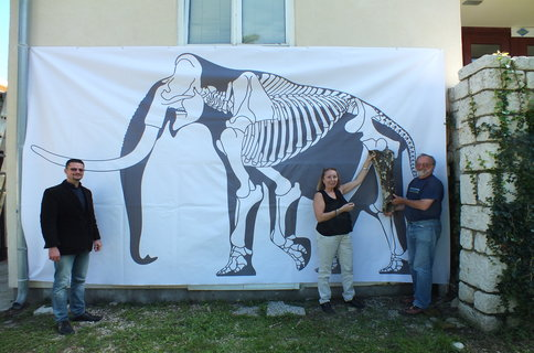 rsz_marjanac-mamut-rab