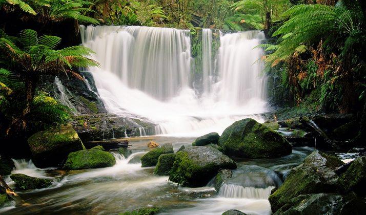 TOP 5 WATERFALLS IN AUSTRALIA